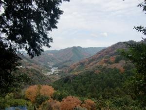 鹿ケ瀬峠・登り途中