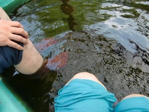 亀山温泉の足湯