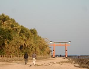 青島神社鳥居