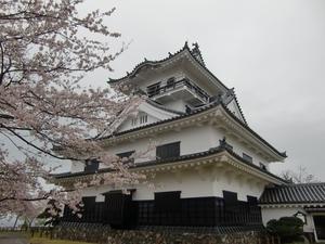 館山城と桜