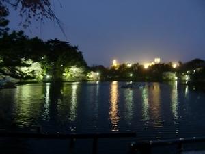 千葉公園・池周り