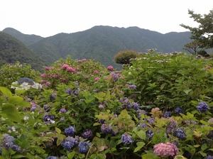 熊野のお山