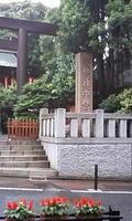 雨の東京大神宮