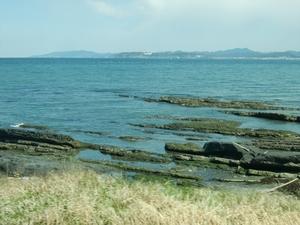 内房の海岸