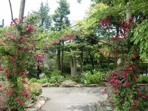 強羅公園・バラのゲート