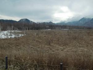 雪の残る湿原