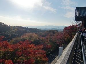 京都市街地を望む